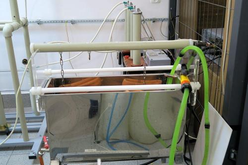 badanie-dielektrykow (10)